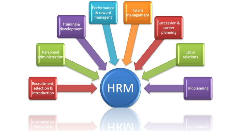 Human Resource and Management Assignment Sample Online