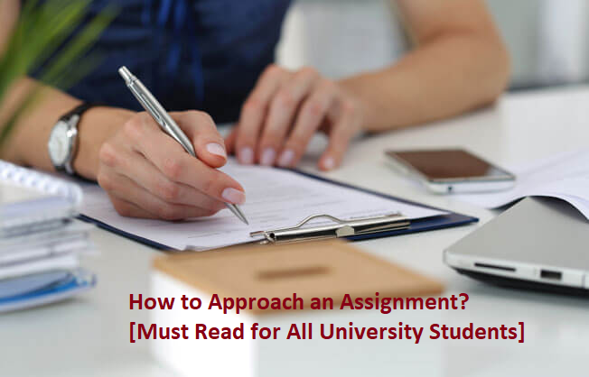 How to Approach an Assignment? [Must Read for All University Students]