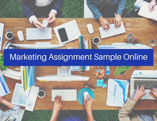 Marketing Assignment Sample Online