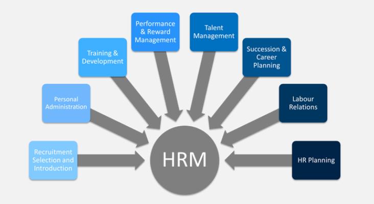 Human Resource Management Sample Online