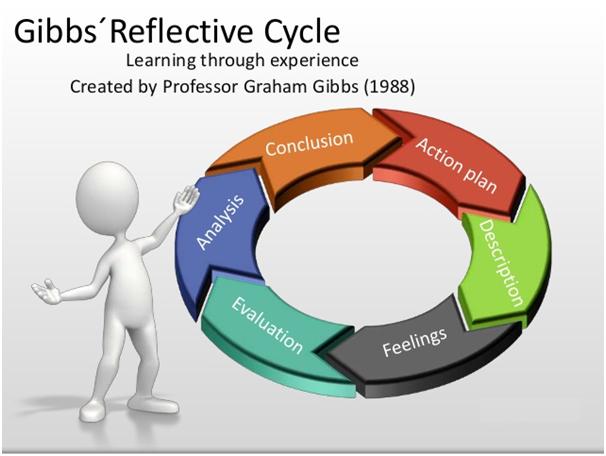 gibbs reflection cycle
