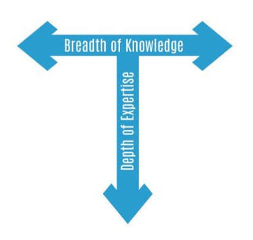knowledge vs expertise
