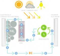 Functioning of a Dye - Sensitized Solar Cell (DSSC)