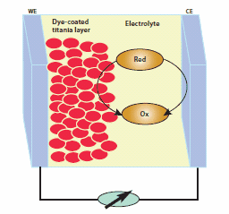 Pictorial representation of a thin layer of DSSC