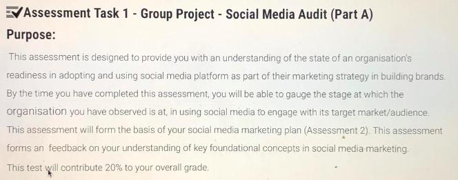 social media audit report assessment
