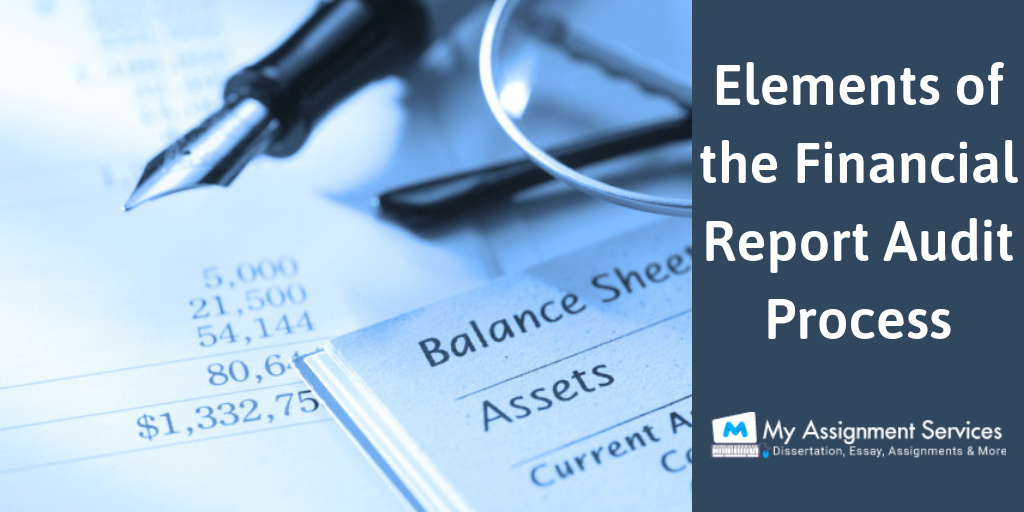 Elements of the Financial Report Audit Process