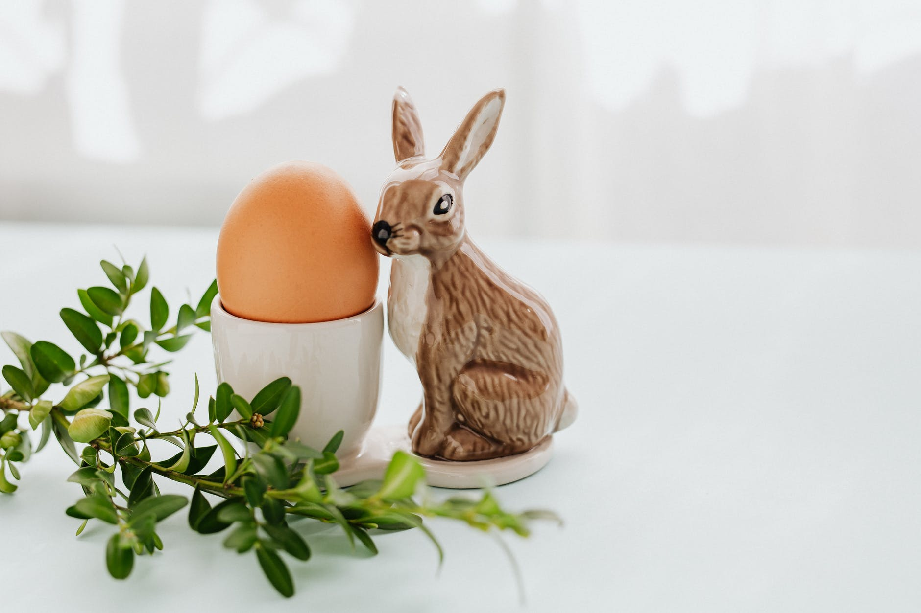 Bunny easter theme