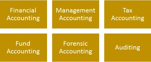 Accounting Assignment Sample| Accounting Assignment Solutions [Free