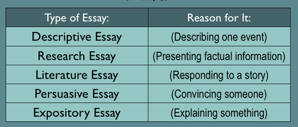 How to Write an management Essay