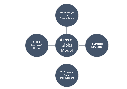 Gibbs Reflection Model Aims