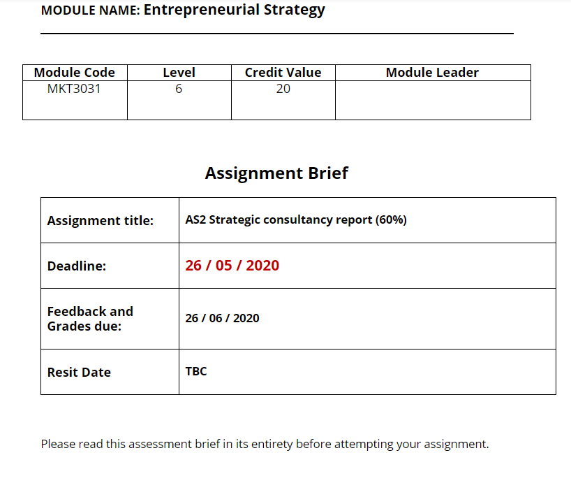 Entrepreneurial Strategy Assignment Sample