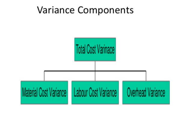 Variance Accounting Assignment components