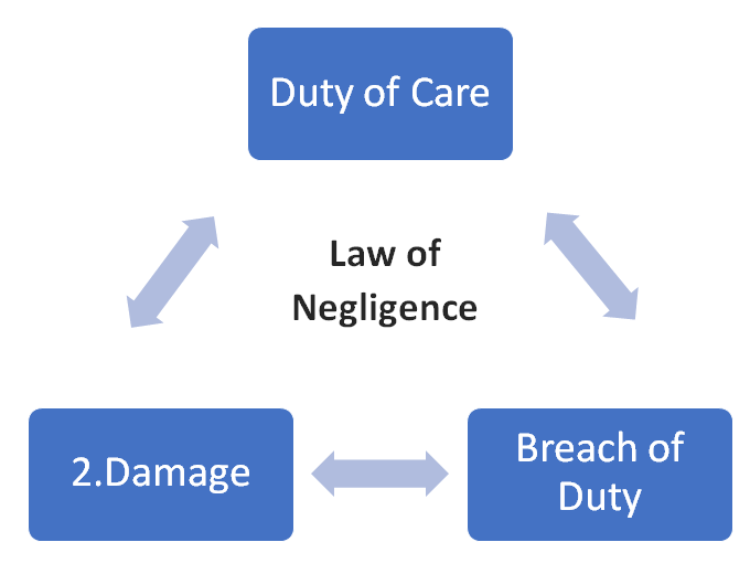 Write a Negligence Law Assignment