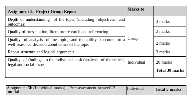 marking rubric for IT assignment