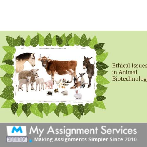 Animal Biotechnology Assessment Help