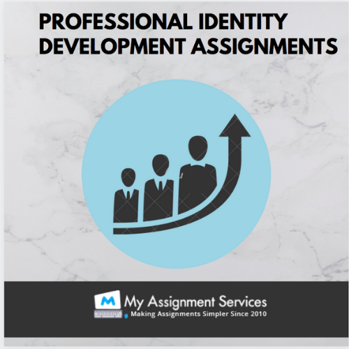 Identity Development Assignment Services