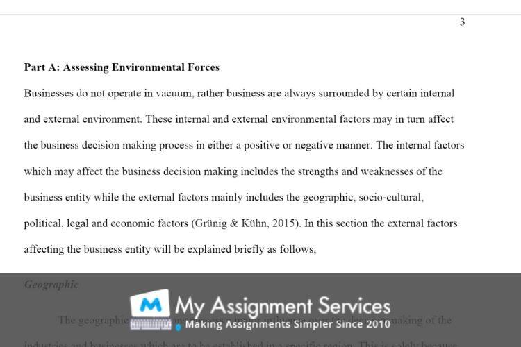 international business environment assessment sample