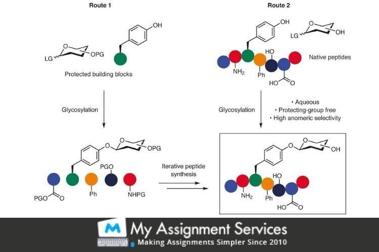 Membrane Science and Engineering Assignment Services