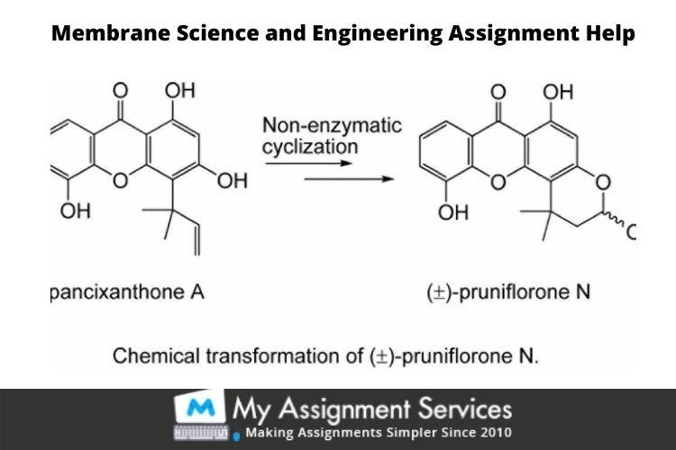 Membrane Science and Engineering Assignment Help