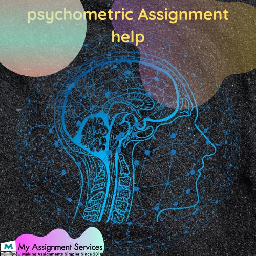 Psychometrics Assignment Help
