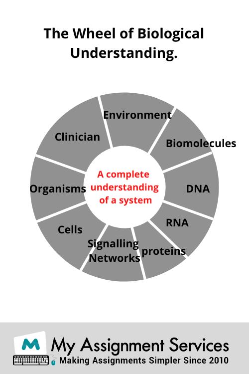 bioinformatics homework help experts