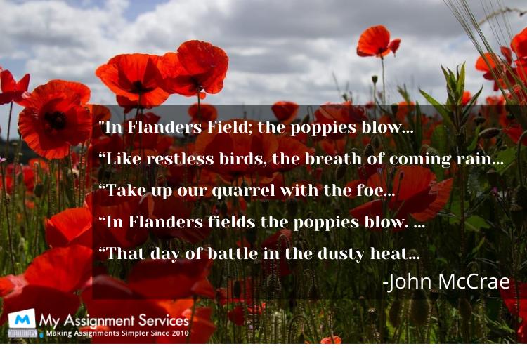Flaners Field Poem