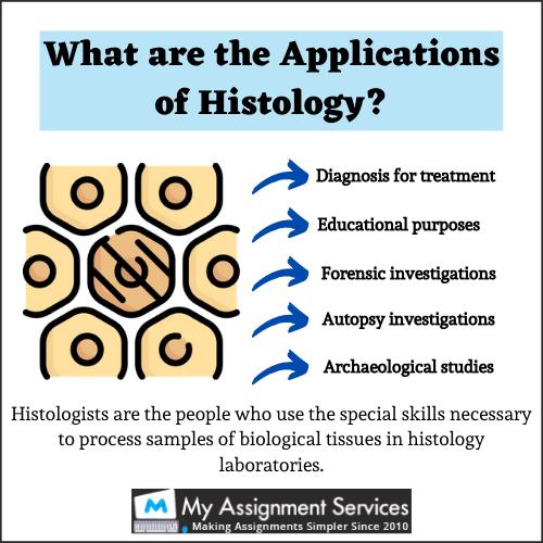 Histology Assignment help usa