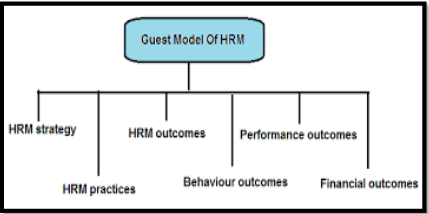 Flow chart of The Guest Model of HRM