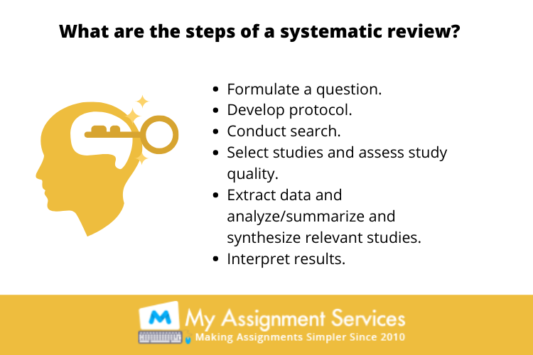 Online Systematic literature review assignment