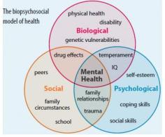 the diagram illustrates the model of psychosocial