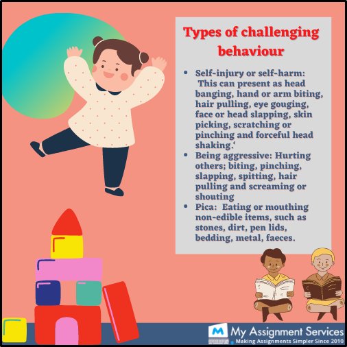 Types of challenging behaviour