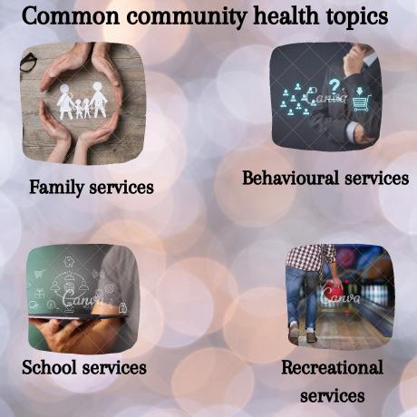 community health Homework Help