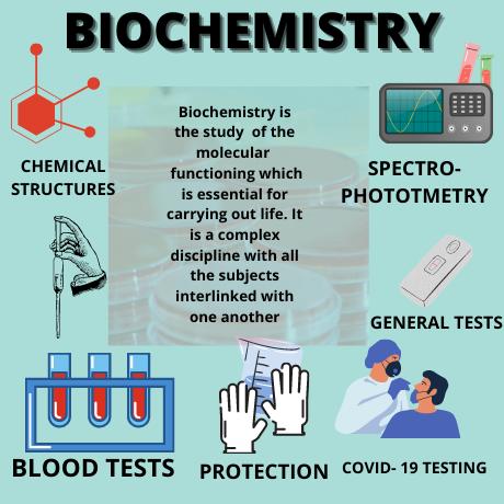 Biochemistry Homework