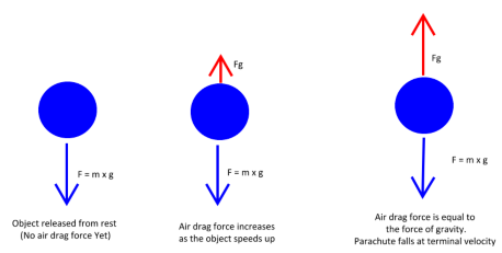 image shows Terminal Velocity acting on the balloon