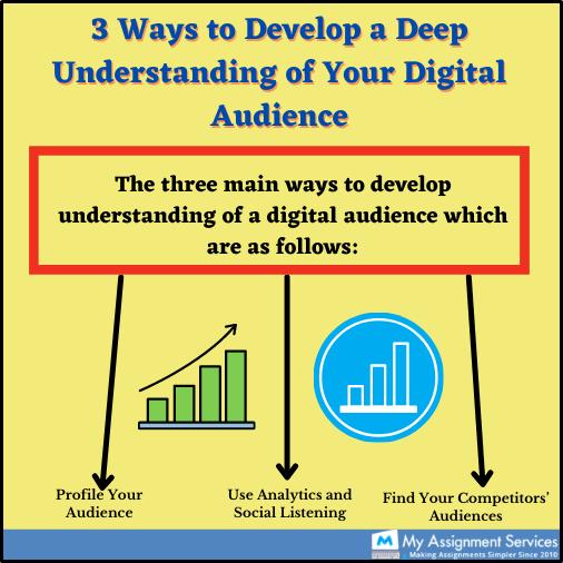 understanding digital audience