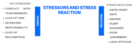 Stressor and stress reaction