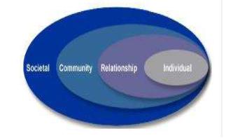 Social Ecological approach