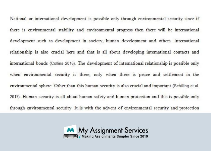 International Security Assignment Help
