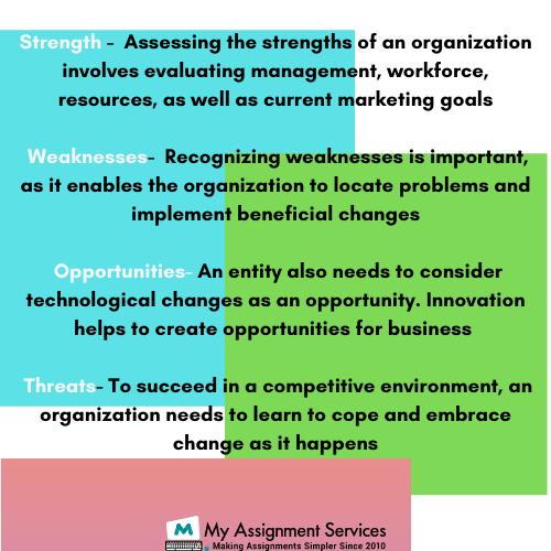 Organizational Analysis Assignment Help