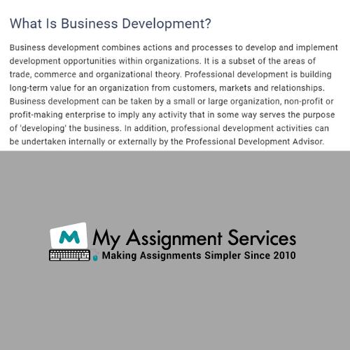 Business Development Assignment Help Online