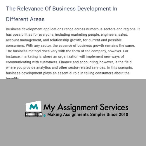 Business Development Assignment Sample
