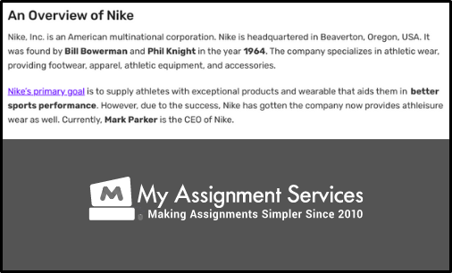 overview of nike